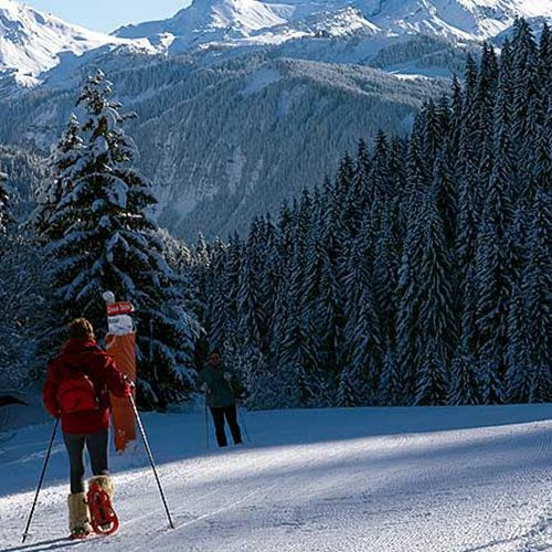 acces-direct-ski-nordique-1855-resultat-2719
