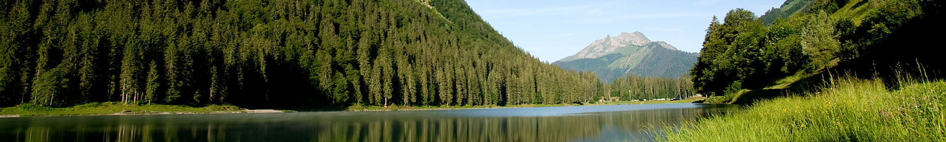 Lac de Montriond en été