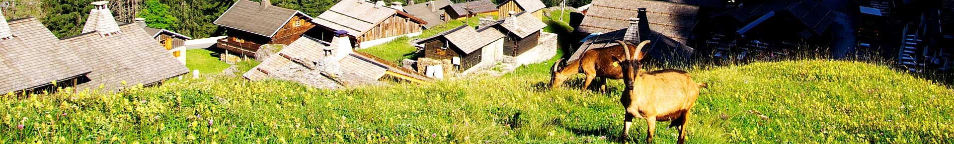 Le village des Lindarets en été