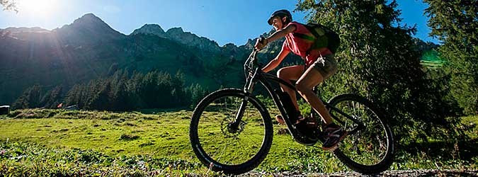 Electric Mountain-Bike