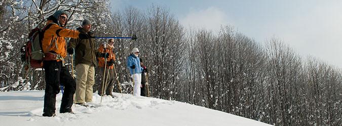Snowshoe Guides