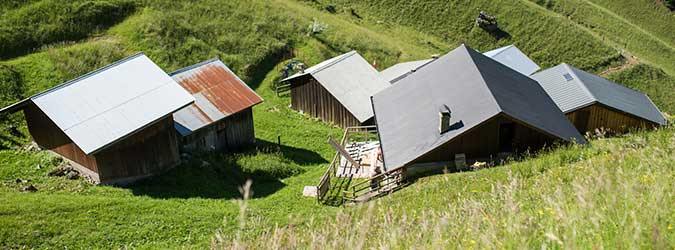 Tréchauffé Alpine Pasture