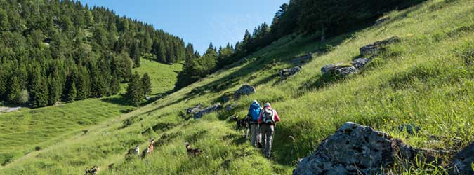 Walking and trekking around Tréchauffé