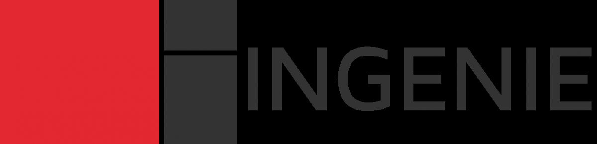 Logo Société Ingénie Tourisme