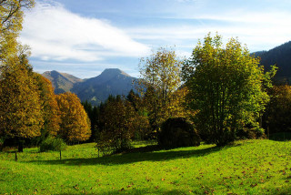 automne-graydon21-5178