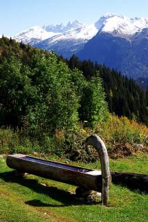 bassin-praz-2795