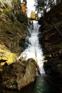 cascade-ardent15-3182