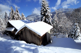 habitat-hiver1-3090