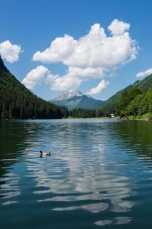 lac-mtd-juin15-2-5156