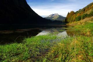 lacmtd-automne07-3-5153