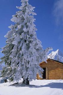paysage-hiver1-3114