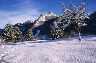 paysage-hiver9-3116