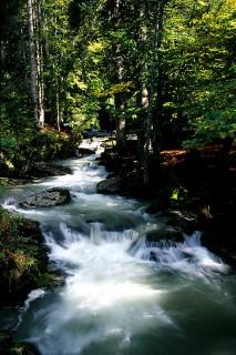 riviere-automne-3044