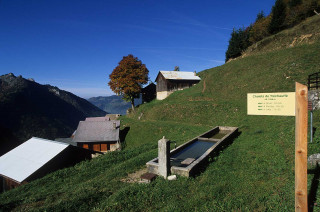 trechauffe-automne10-3049