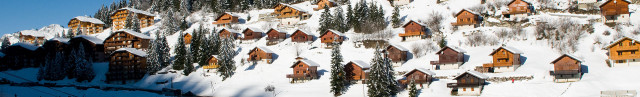 Alpes Services Immobilier