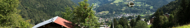 Alpes Services Immobiliers