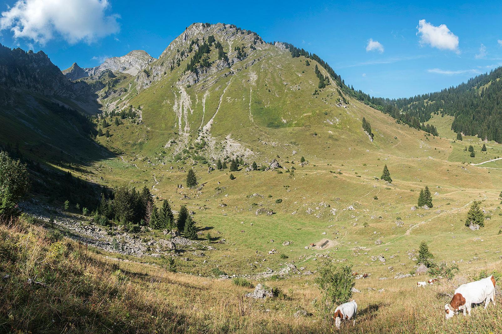 Alpage de Graydon