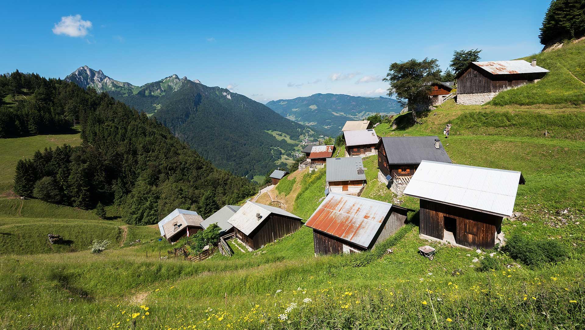 Alpage de Tréchauffé et Mont Billat