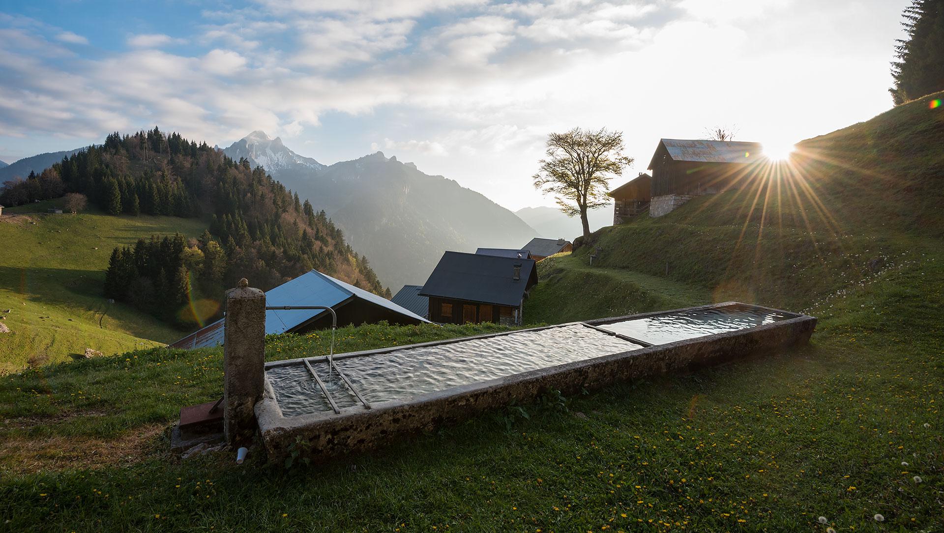 Coucher de soleil sur l'alpage de Tréchauffé